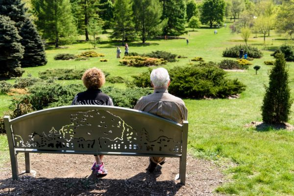 Two individuals sitting on a bench that has an engraving of a treeline. Overall scene has green grass, bushes, and several evergreens