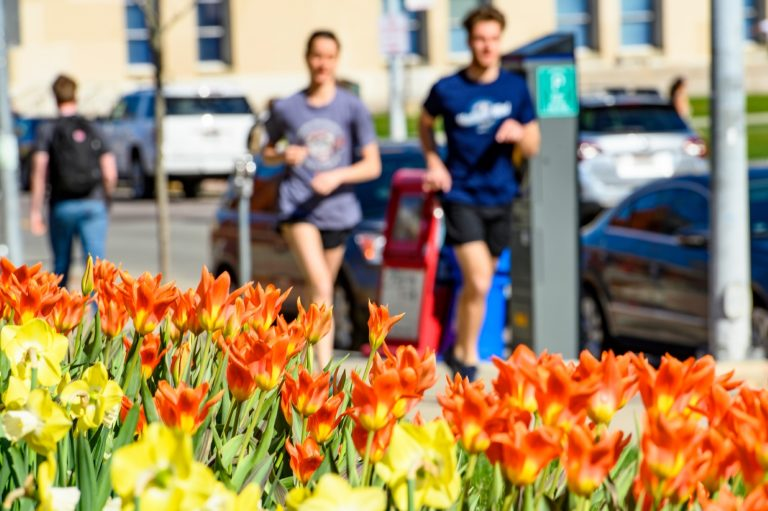 Photo of orange flowers on campus, two runners blurred from view in the background